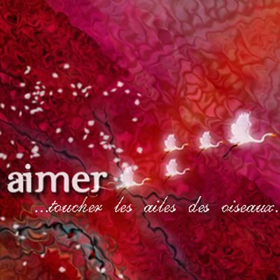 Aimer - Novel Cover Illustration