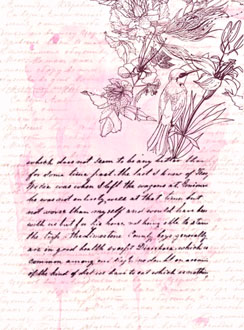 dechapoe_novelcover_illustration_retrospective_back_2